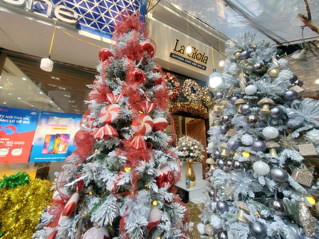 Phù phép bạch thông hàng Tàu chơi Noel, hét giá 20 triệu đồng vẫn gây sốt - Ảnh 2.
