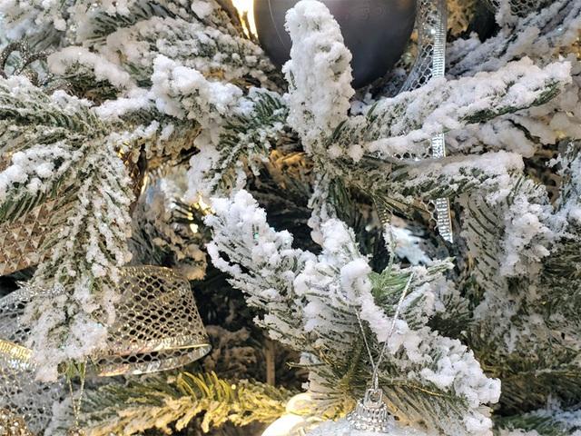 Phù phép bạch thông hàng Tàu chơi Noel, hét giá 20 triệu đồng vẫn gây sốt - Ảnh 3.