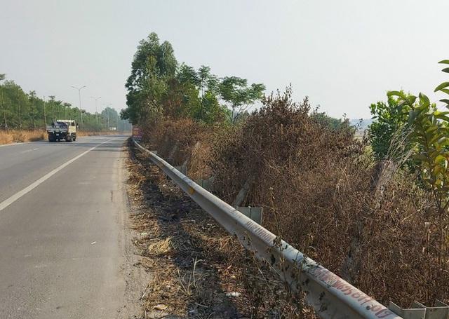 Nhiều cây xanh trên Quốc lộ 18 bất ngờ bị đốt cháy rụi - Ảnh 4.