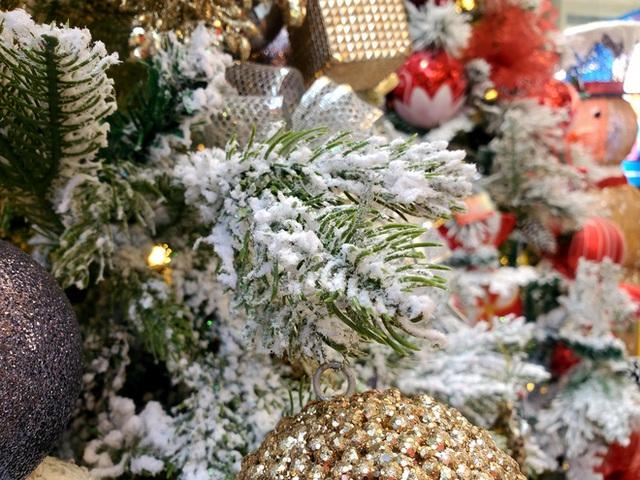 Phù phép bạch thông hàng Tàu chơi Noel, hét giá 20 triệu đồng vẫn gây sốt - Ảnh 5.