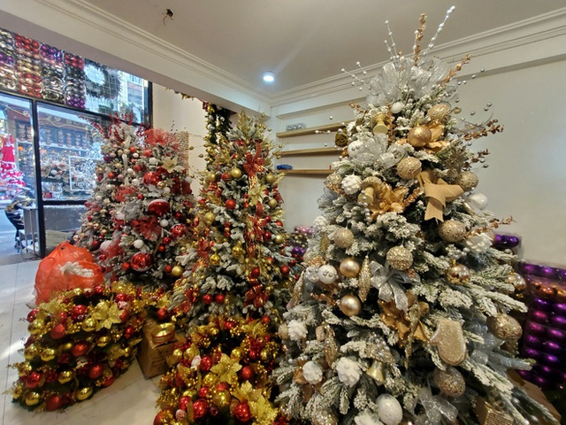Phù phép bạch thông hàng Tàu chơi Noel, hét giá 20 triệu đồng vẫn gây sốt - Ảnh 7.