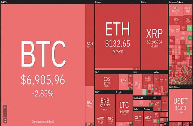 Bitcoin cháy rực giữa 'biển lửa' thị trường - Ảnh 1.