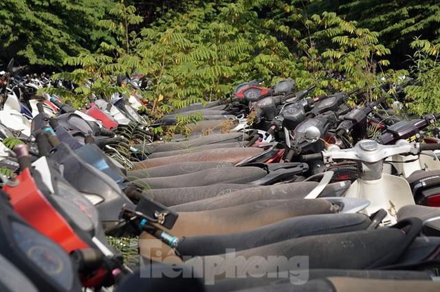Porsche, Lexus... tiền tỷ phủ bụi, bỏ xó trong bãi giữ xe ở Hà Nội - Ảnh 1.