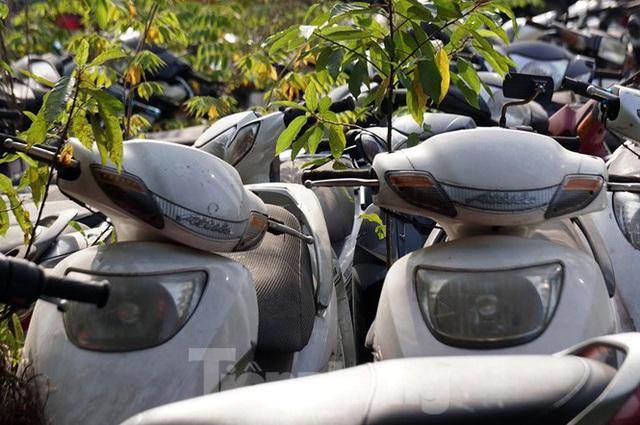 Porsche, Lexus... tiền tỷ phủ bụi, bỏ xó trong bãi giữ xe ở Hà Nội - Ảnh 3.