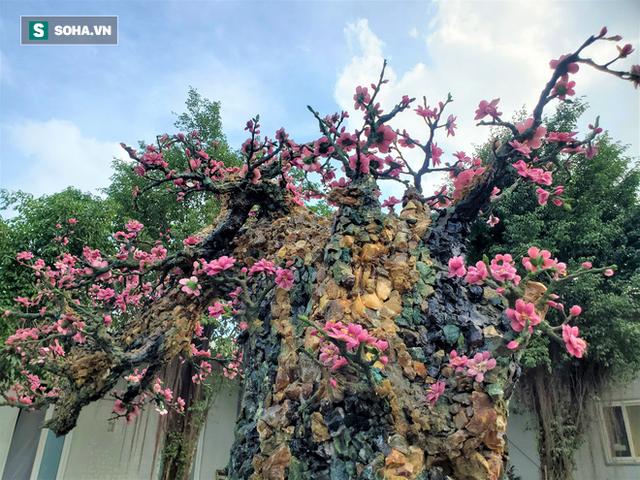 Mãn nhãn cây đào dáng huyền độc nhất Việt Nam, nặng 2 tấn ghép từ hàng nghìn viên đá quý - Ảnh 2.