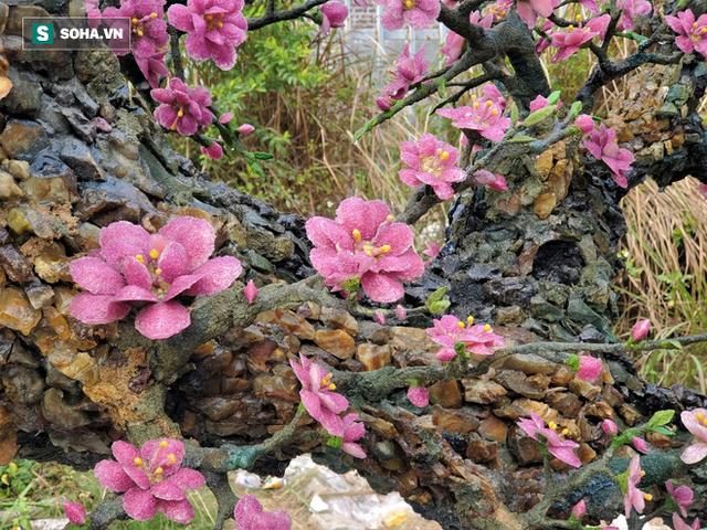 Mãn nhãn cây đào dáng huyền độc nhất Việt Nam, nặng 2 tấn ghép từ hàng nghìn viên đá quý - Ảnh 9.