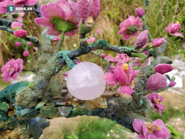 Mãn nhãn cây đào dáng huyền độc nhất Việt Nam, nặng 2 tấn ghép từ hàng nghìn viên đá quý - Ảnh 10.