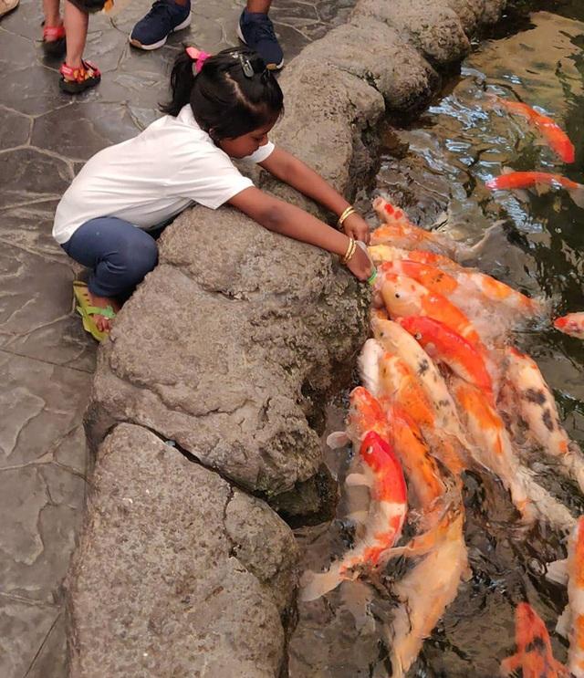 Đến Pattaya mà chỉ biết có tắm biển thôi thì phải bổ sung gấp thực đơn du lịch của bạn bằng 10 trải nghiệm thú vị sau - Ảnh 23.