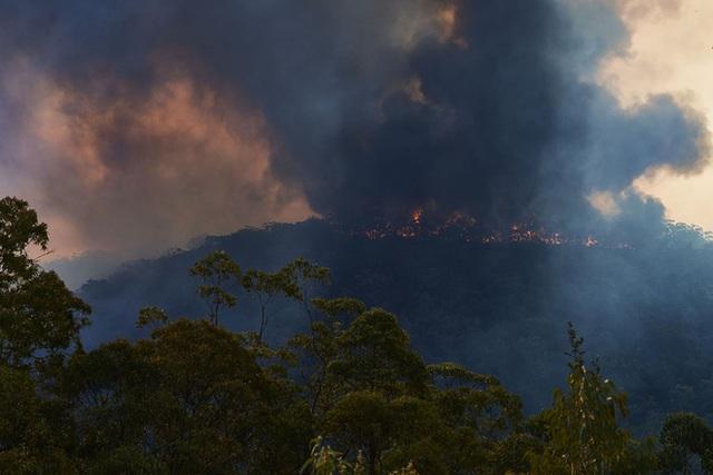 Thảm họa cháy rừng lớn nhất lịch sử Úc: Nhà hát Opera Sydney khuất sau khói mù, 2 người thiệt mạng khi tình nguyện dập lửa khiến cả nước xót thương - Ảnh 7.