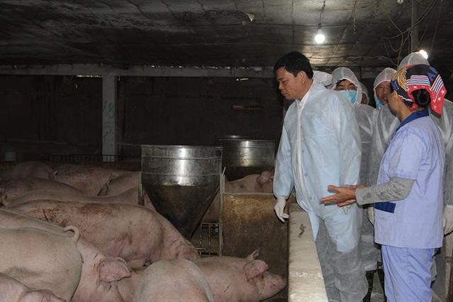 Găm hàng đẩy giá thịt lợn, Bộ trưởng cảnh báo gậy ông đập lưng ông - Ảnh 1.