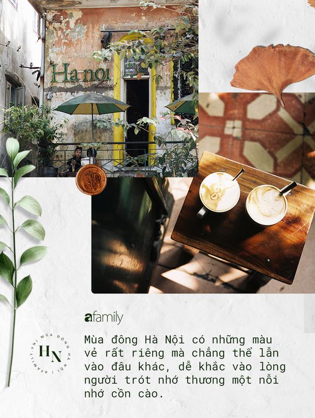 Mùa đông Hà Nội có hương vị gì khiến người ta phải lòng đến thế, năm nào cũng đến mà vẫn khắc khoải ngóng trông - Ảnh 3.