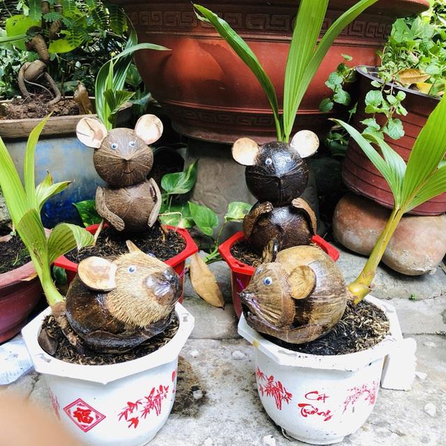 Biến quả dừa khô bỏ đi thành bonsai chuột tiền triệu, chàng thanh niên lãi đậm dịp Tết 2020 - Ảnh 1.