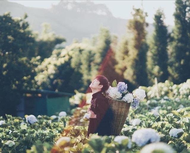 """Check in gấp ở 4 vườn hoa đẹp nhất Chiang Mai để biết vì sao nơi đây được mệnh danh là """"đóa hồng phương Bắc"""" của đất Thái - Ảnh 2."""