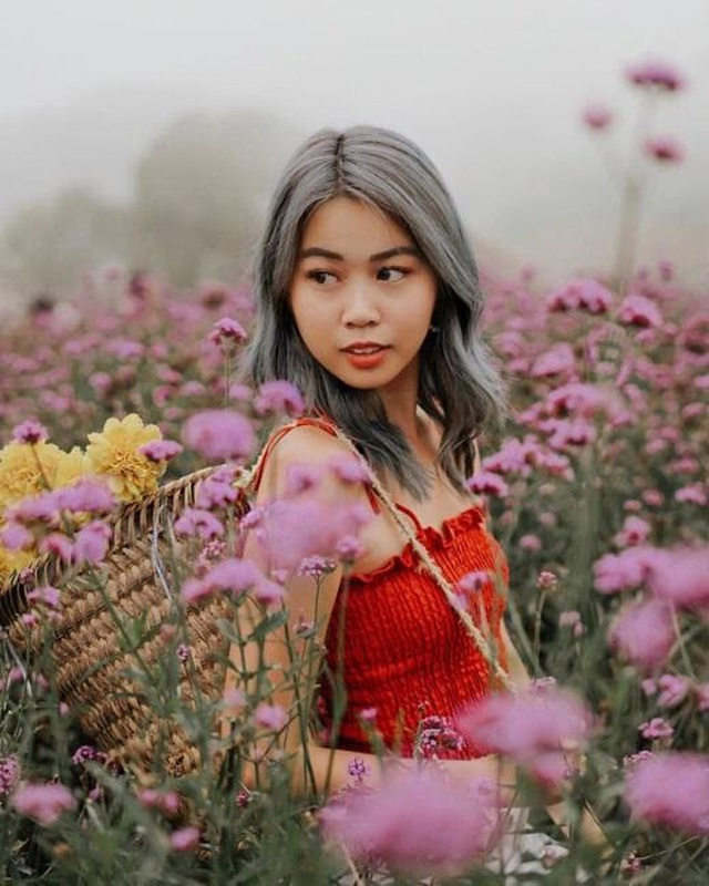 """Check in gấp ở 4 vườn hoa đẹp nhất Chiang Mai để biết vì sao nơi đây được mệnh danh là """"đóa hồng phương Bắc"""" của đất Thái - Ảnh 12."""
