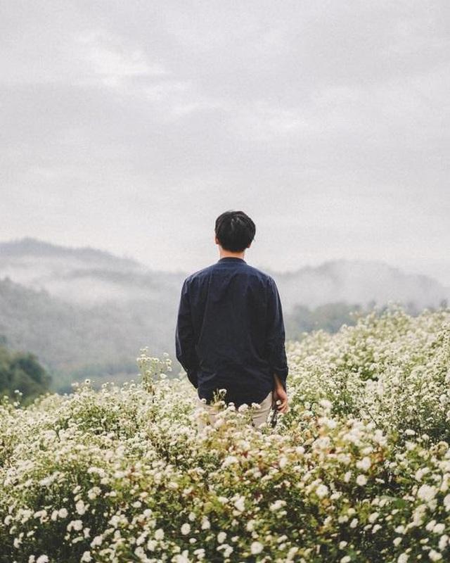 """Check in gấp ở 4 vườn hoa đẹp nhất Chiang Mai để biết vì sao nơi đây được mệnh danh là """"đóa hồng phương Bắc"""" của đất Thái - Ảnh 16."""