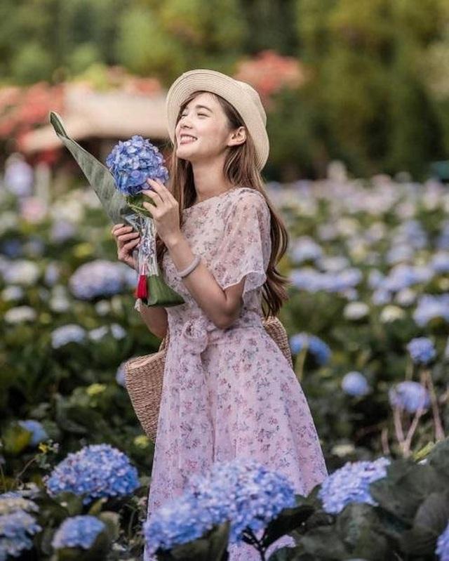 """Check in gấp ở 4 vườn hoa đẹp nhất Chiang Mai để biết vì sao nơi đây được mệnh danh là """"đóa hồng phương Bắc"""" của đất Thái - Ảnh 3."""