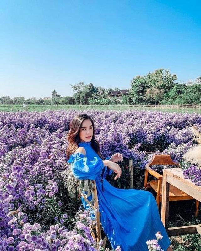 """Check in gấp ở 4 vườn hoa đẹp nhất Chiang Mai để biết vì sao nơi đây được mệnh danh là """"đóa hồng phương Bắc"""" của đất Thái - Ảnh 27."""