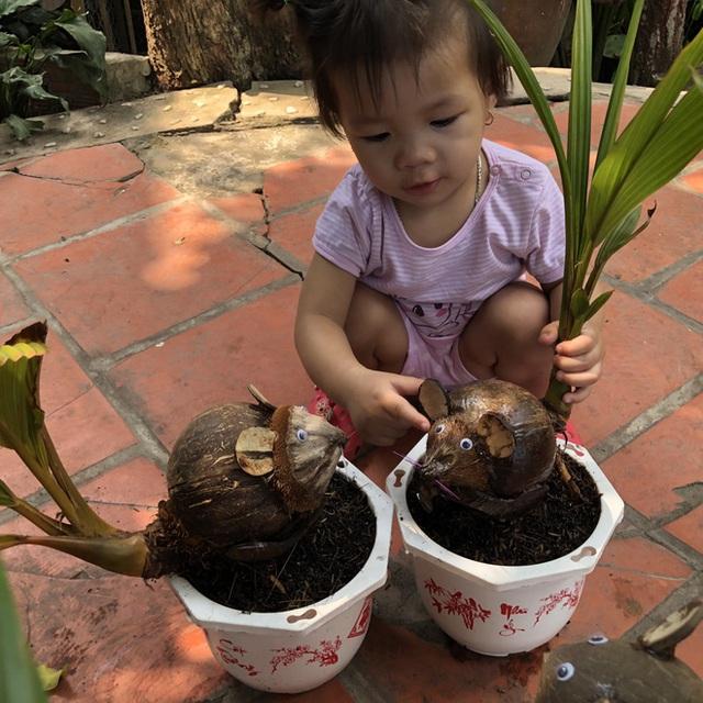 Biến quả dừa khô bỏ đi thành bonsai chuột tiền triệu, chàng thanh niên lãi đậm dịp Tết 2020 - Ảnh 7.