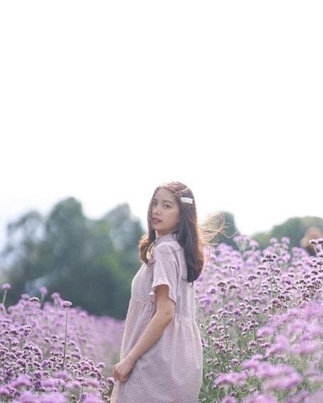 """Check in gấp ở 4 vườn hoa đẹp nhất Chiang Mai để biết vì sao nơi đây được mệnh danh là """"đóa hồng phương Bắc"""" của đất Thái - Ảnh 9."""