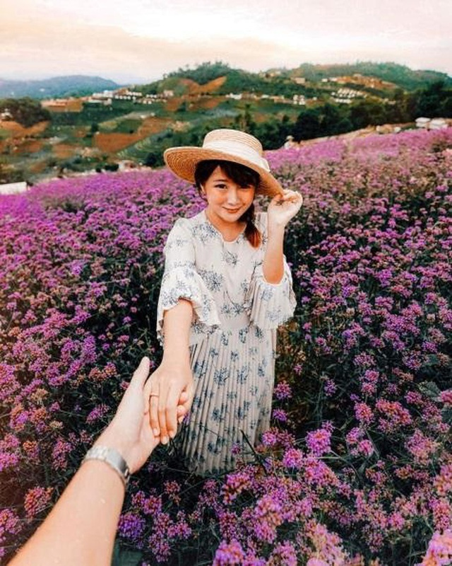 """Check in gấp ở 4 vườn hoa đẹp nhất Chiang Mai để biết vì sao nơi đây được mệnh danh là """"đóa hồng phương Bắc"""" của đất Thái - Ảnh 10."""