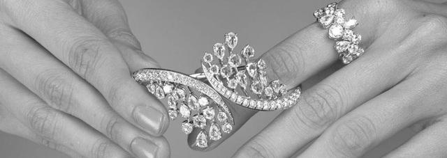 Đằng sau những bộ trang sức kim cương tại đêm hội Le Bal của con nhà giàu: Giá trị hàng triệu USD, do truyền nhân của gia tộc 4 đời làm kim cương nhào nặn - Ảnh 3.