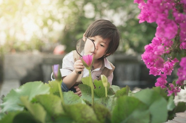 Nếu có 10 biểu hiện này, con bạn có thể sở hữu tố chất thiên tài: Nhận biết càng sớm càng nhiều cơ hội giúp trẻ phát triển nổi bật - Ảnh 1.