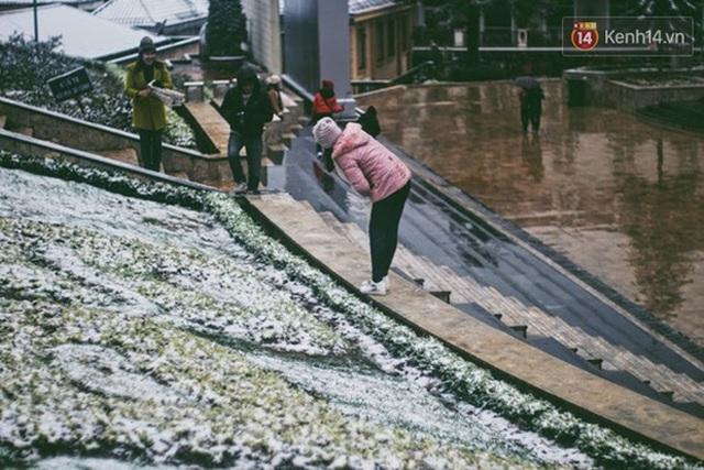 """HOT: Xuất hiện băng giá phủ trắng đỉnh Fansipan, dân tình rục rịch rủ nhau cuối năm lên Sa Pa """"săn"""" tuyết rơi - Ảnh 7."""