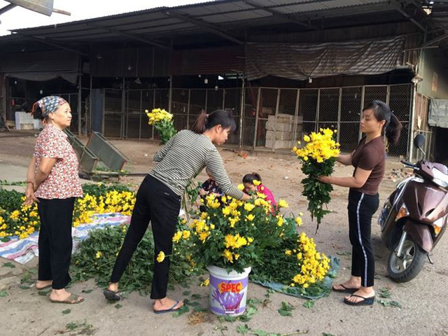 Rau xanh, hoa tươi ở Hà Nội rớt giá thê thảm sau Tết - Ảnh 1.