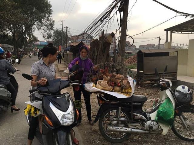 Rau xanh, hoa tươi ở Hà Nội rớt giá thê thảm sau Tết - Ảnh 2.