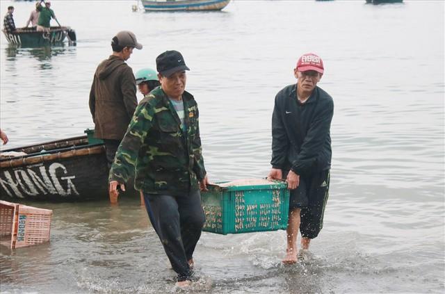 Ngư dân Đà Nẵng trúng mùa ruốc đầu năm, thu nhập bạc triệu mỗi ngày - Ảnh 1.