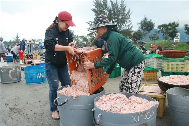 Ngư dân Đà Nẵng trúng mùa ruốc đầu năm, thu nhập bạc triệu mỗi ngày - Ảnh 3.