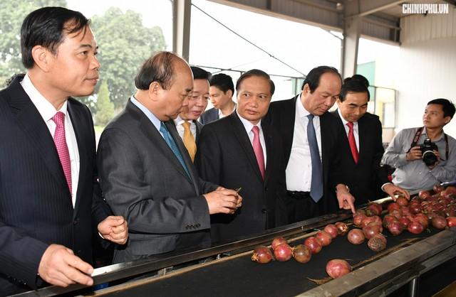 Xông đất ngành nông nghiệp, Thủ tướng kỳ vọng vào đòn bẩy chiến lược của Việt Nam - Ảnh 5.