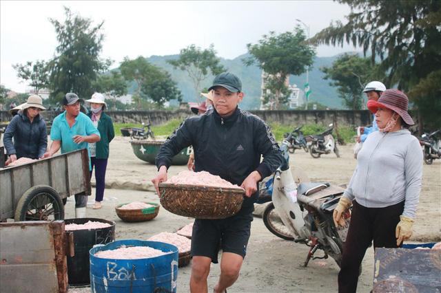 Ngư dân Đà Nẵng trúng mùa ruốc đầu năm, thu nhập bạc triệu mỗi ngày - Ảnh 6.