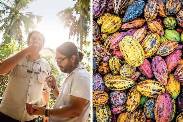 Câu chuyện đầy cảm hứng của ông chủ món socola Việt ngon nhất thế giới: Bị gọi là điên khi đến Việt Nam, nay có trong tay nhà máy công suất 3 tấn/năm thu về hàng triệu USD - Ảnh 3.