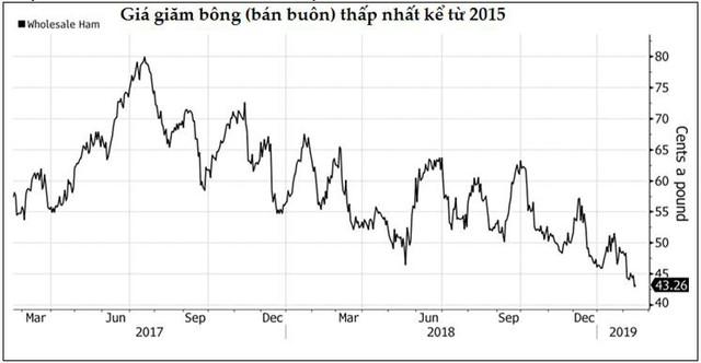Thị trường ngày 15/2: Giá dầu lên cao nhất kể từ đầu năm, vàng và cao su cũng tăng - Ảnh 1.