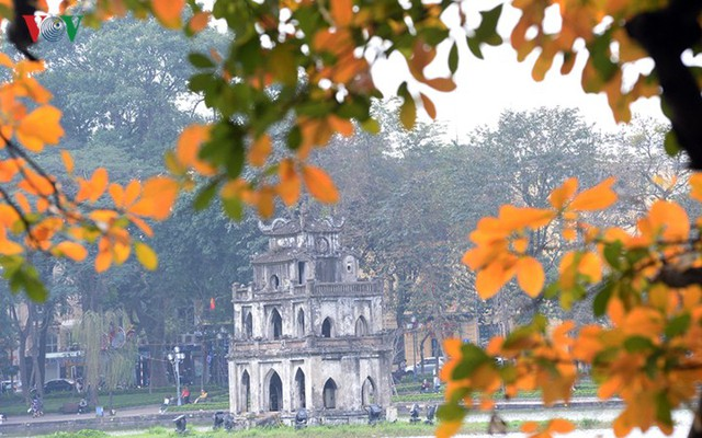 Ngỡ ngàng vẻ đẹp Hồ Gươm như mùa thu châu Âu - Ảnh 15.