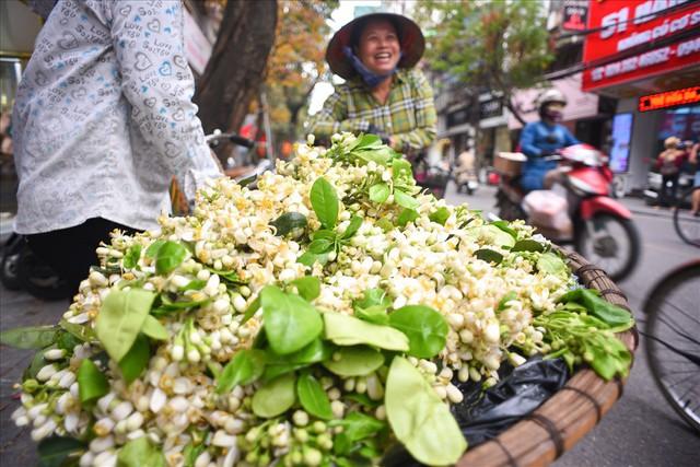 Đất Hà Thành thơm lừng mùa hoa bưởi - Ảnh 3.
