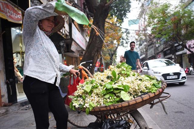 Đất Hà Thành thơm lừng mùa hoa bưởi - Ảnh 7.