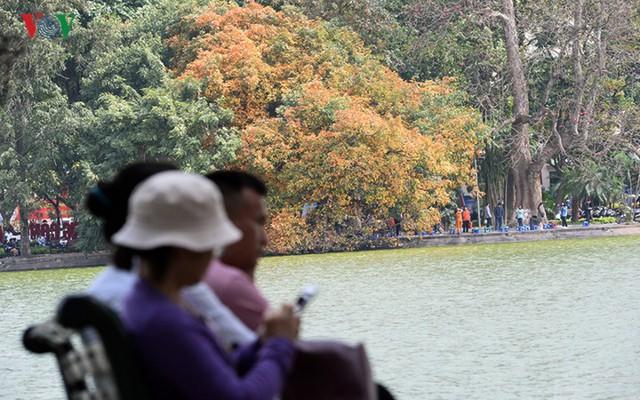 Ngỡ ngàng vẻ đẹp Hồ Gươm như mùa thu châu Âu - Ảnh 10.