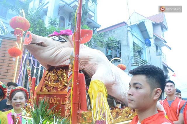 Hà Nội: Dùng kim khâu vào da của 17 ông lợn để thực hiện lễ rước và tế lợn trong đêm ở làng La Phù - Ảnh 1.
