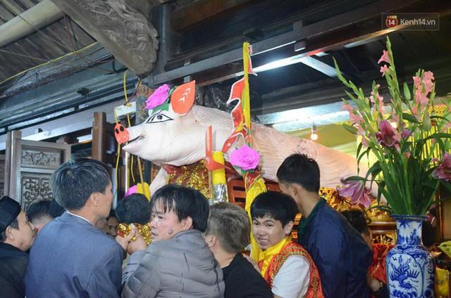 Hà Nội: Dùng kim khâu vào da của 17 ông lợn để thực hiện lễ rước và tế lợn trong đêm ở làng La Phù - Ảnh 16.