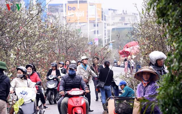 Ngỡ ngàng sắc hoa lê trắng tinh khôi trên đường phố Hà Nội - Ảnh 6.