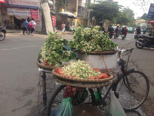"""Rằm tháng Giêng, hoa bưởi được nhiều người săn đón dù giá """"chát"""" - Ảnh 2."""