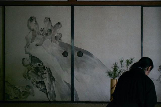 Sau 10 năm ẩn dật, người phụ nữ Nhật Bản trở thành kho báu quốc gia khi được mọi người mệnh danh là bậc thầy cắm hoa - Ảnh 11.