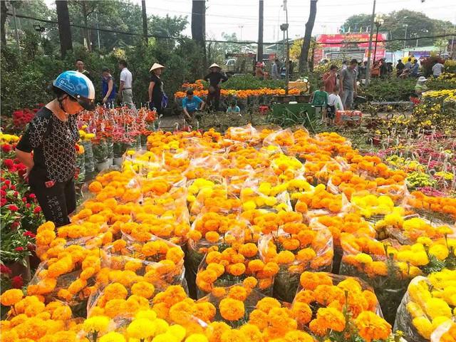 Chợ hoa Tết lớn nhất Sài Gòn nhộn nhịp ngày cuối năm - Ảnh 10.