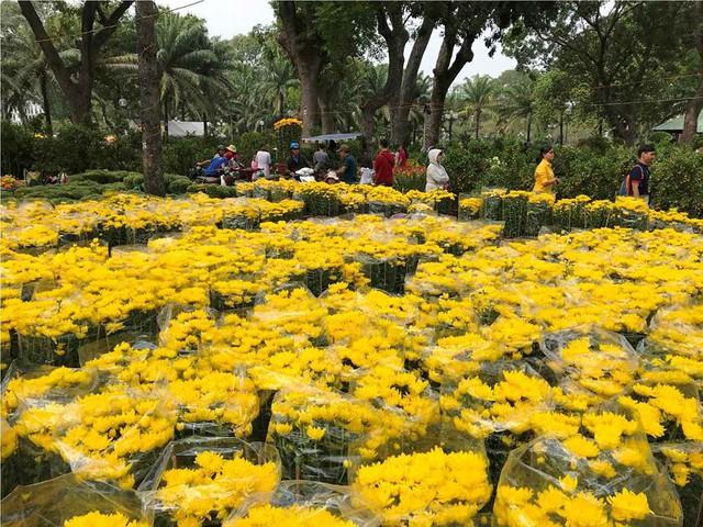 Chợ hoa Tết lớn nhất Sài Gòn nhộn nhịp ngày cuối năm - Ảnh 11.