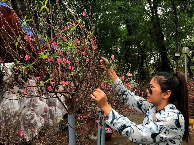 Chợ hoa Tết lớn nhất Sài Gòn nhộn nhịp ngày cuối năm - Ảnh 13.