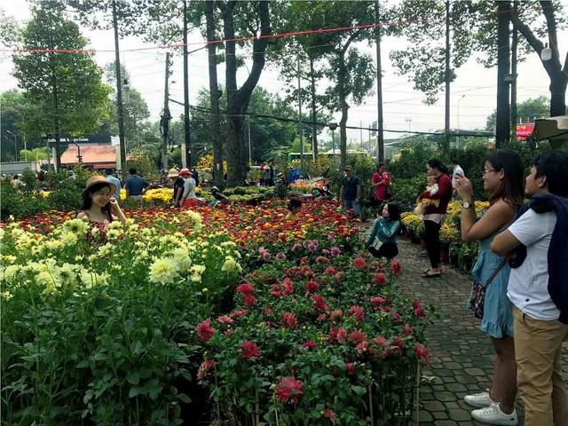 Chợ hoa Tết lớn nhất Sài Gòn nhộn nhịp ngày cuối năm - Ảnh 15.