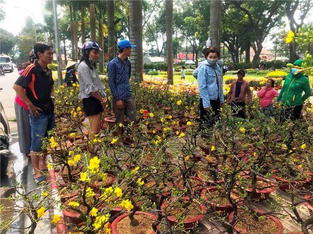 Chợ hoa Tết lớn nhất Sài Gòn nhộn nhịp ngày cuối năm - Ảnh 4.