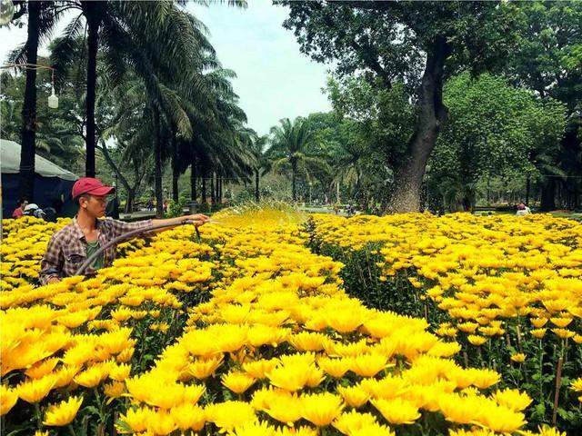 Chợ hoa Tết lớn nhất Sài Gòn nhộn nhịp ngày cuối năm - Ảnh 9.